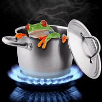 the frog in hot water story