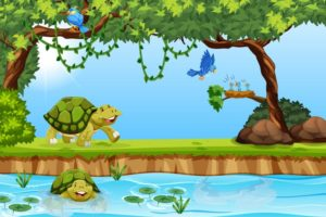 Tortoise and the bird story